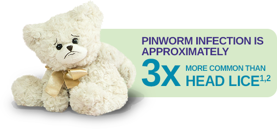 PINWORM infection is 3x more common than head lice
